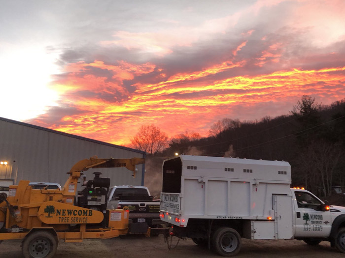 newcomb tree removal truck during sunset